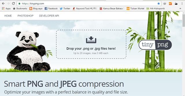 cara mengoptimalkan ukuran file gambar di postingan blog